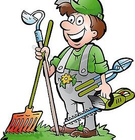 Üleüldine aia hooldus (Hind kokkuleppel)
